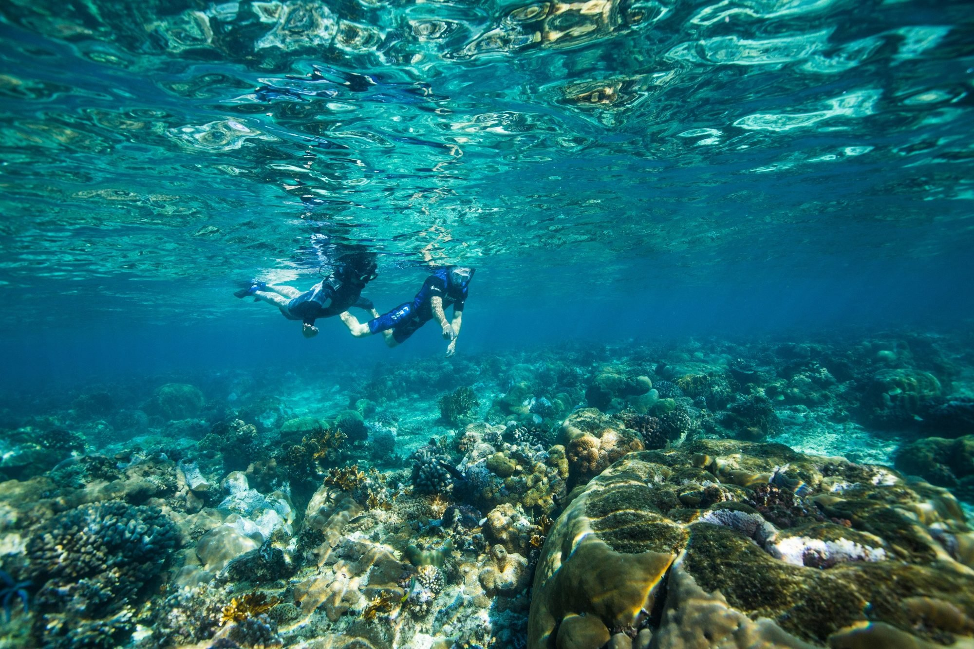 scuba snorkel